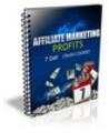 Thumbnail Affiliate Marketing Profits 7 Day Crash Course
