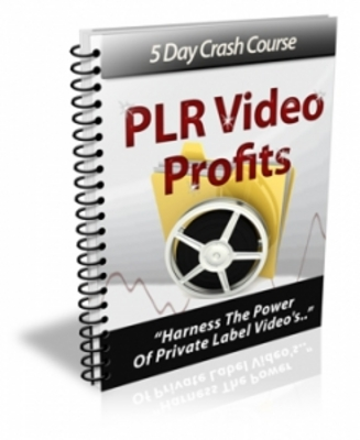 Product picture **NEW** How To Make Profits From PLR Video